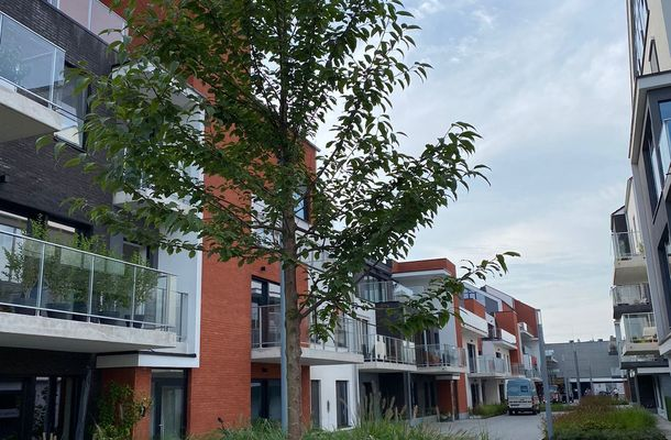 HAAGBEUK - laatste appartementen te koop